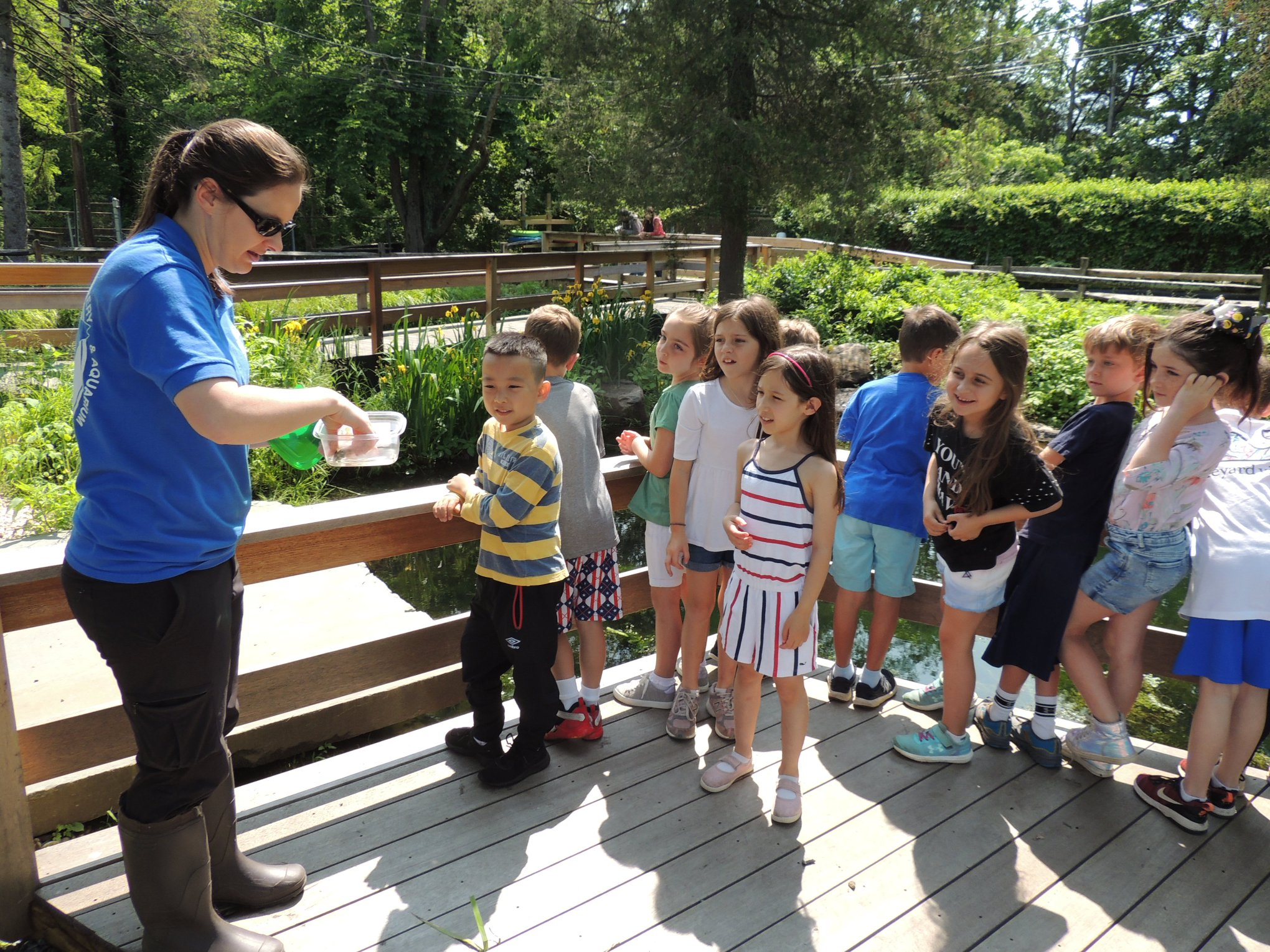 GH Students Watch as Turtle is Released at CSH Fish Hatchery